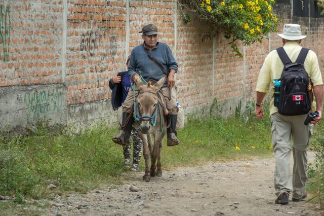 Blog Vilcabamba-6